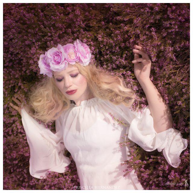 flowers-01 -640- by Priscilla Hernandez.jpg