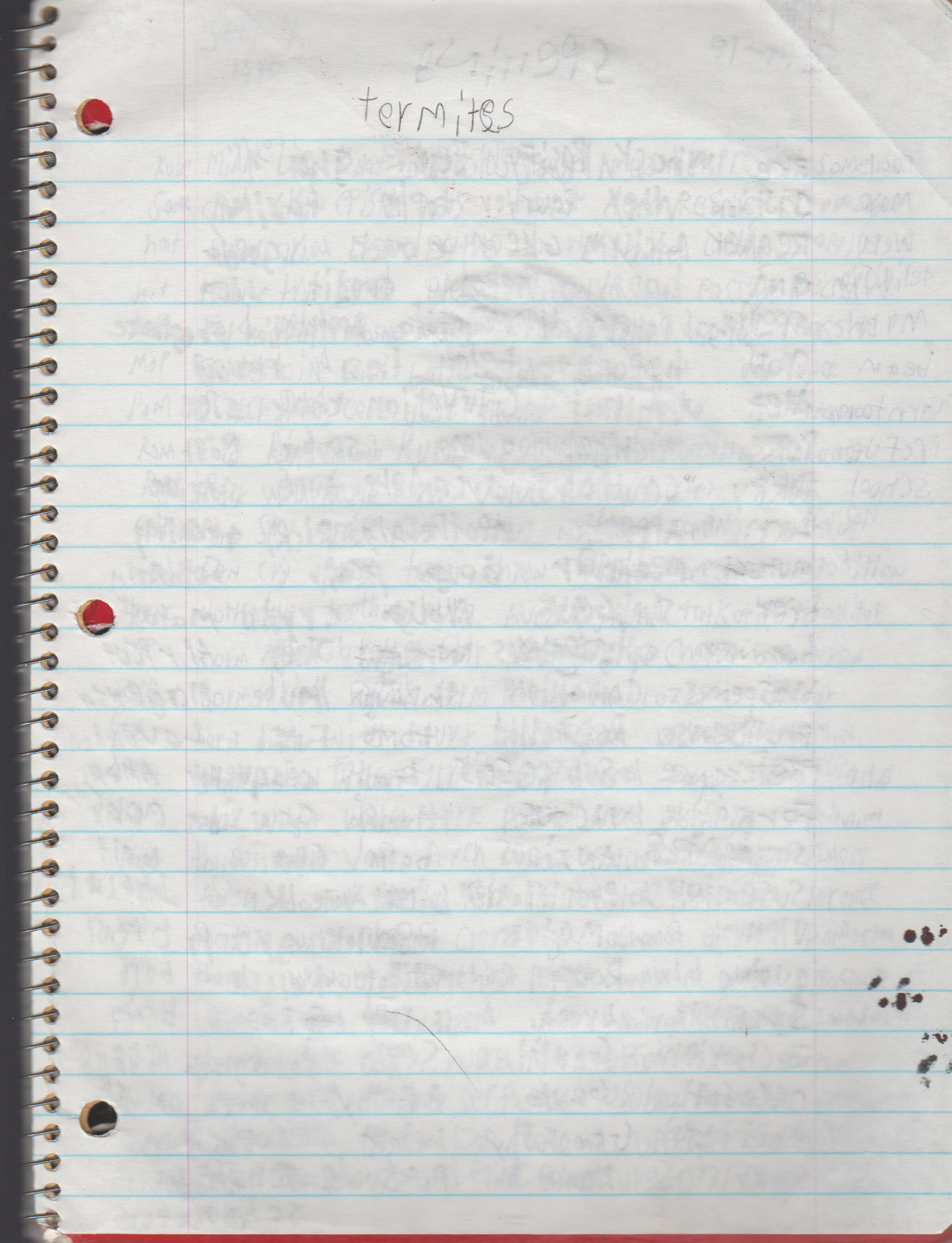 1996-08-18 - Saturday - 11 yr old Joey Arnold's School Book, dates through to 1998 apx, mostly 96, Writings, Drawings, Etc-100.png