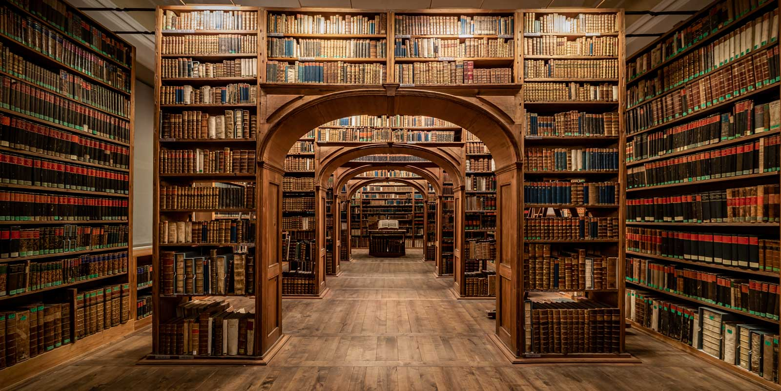 Goerlitz-Library-(3)-LR.jpg