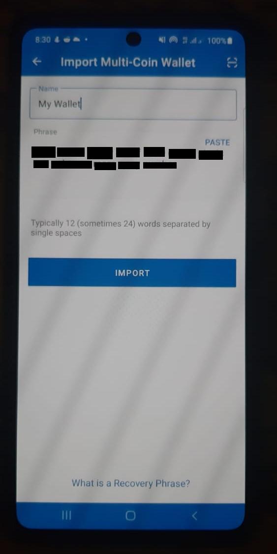 8.trust-wallet-import.jpeg