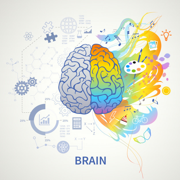 concepto-funciones-cerebrales-representacion-simbolica-infografica-logica-lado-izquierdo-ciencia-matematica-artes-correctas-creatividad_1284-29036.jpg
