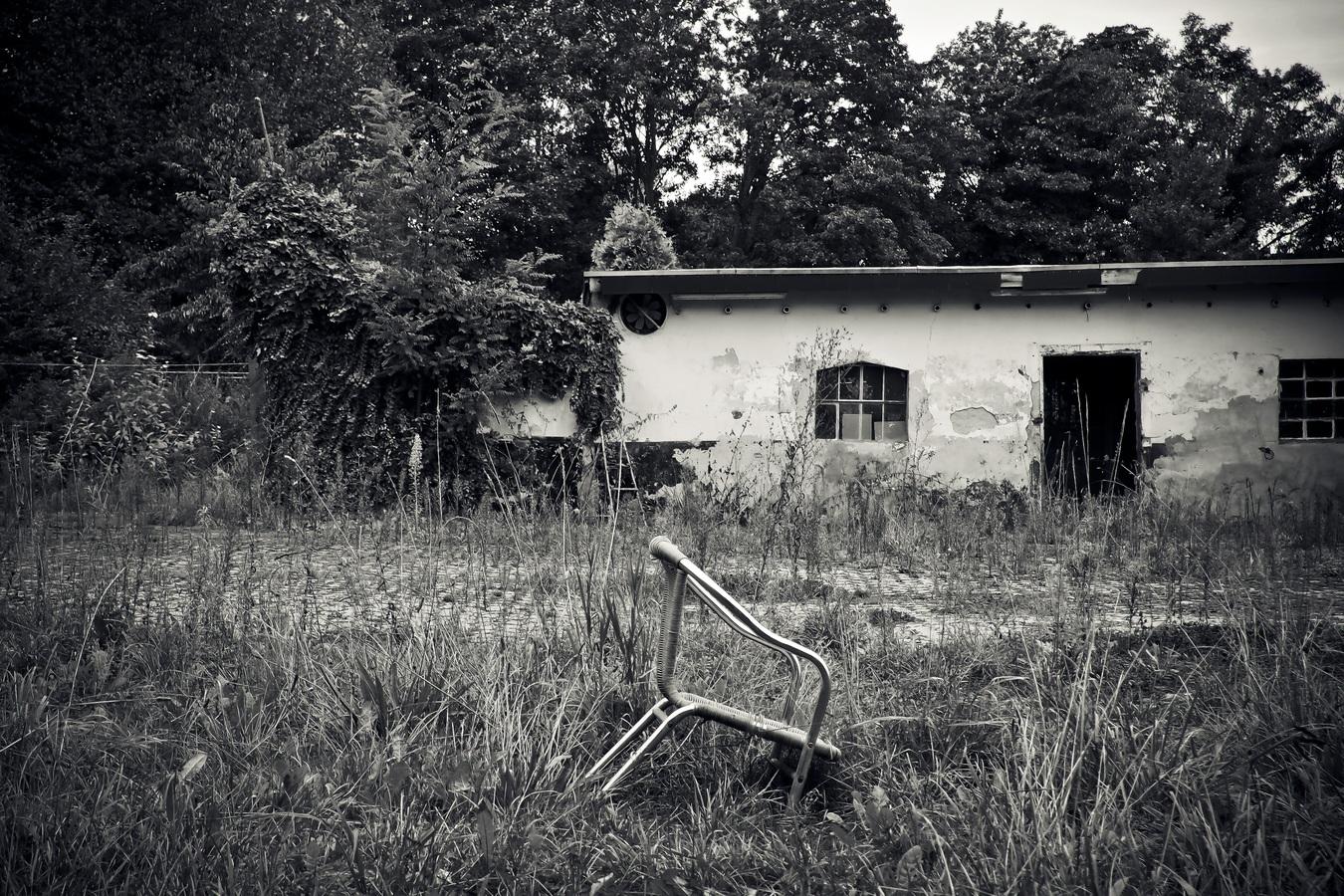 tree-grass-light-black-and-white-white-photography-786378-pxhere.com.jpg