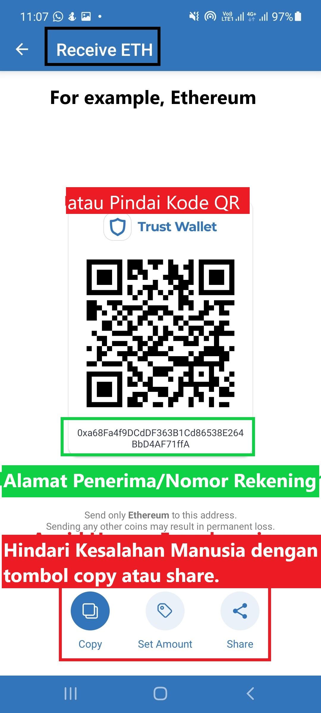 4.trust-wallet-mobile-receive.jpg