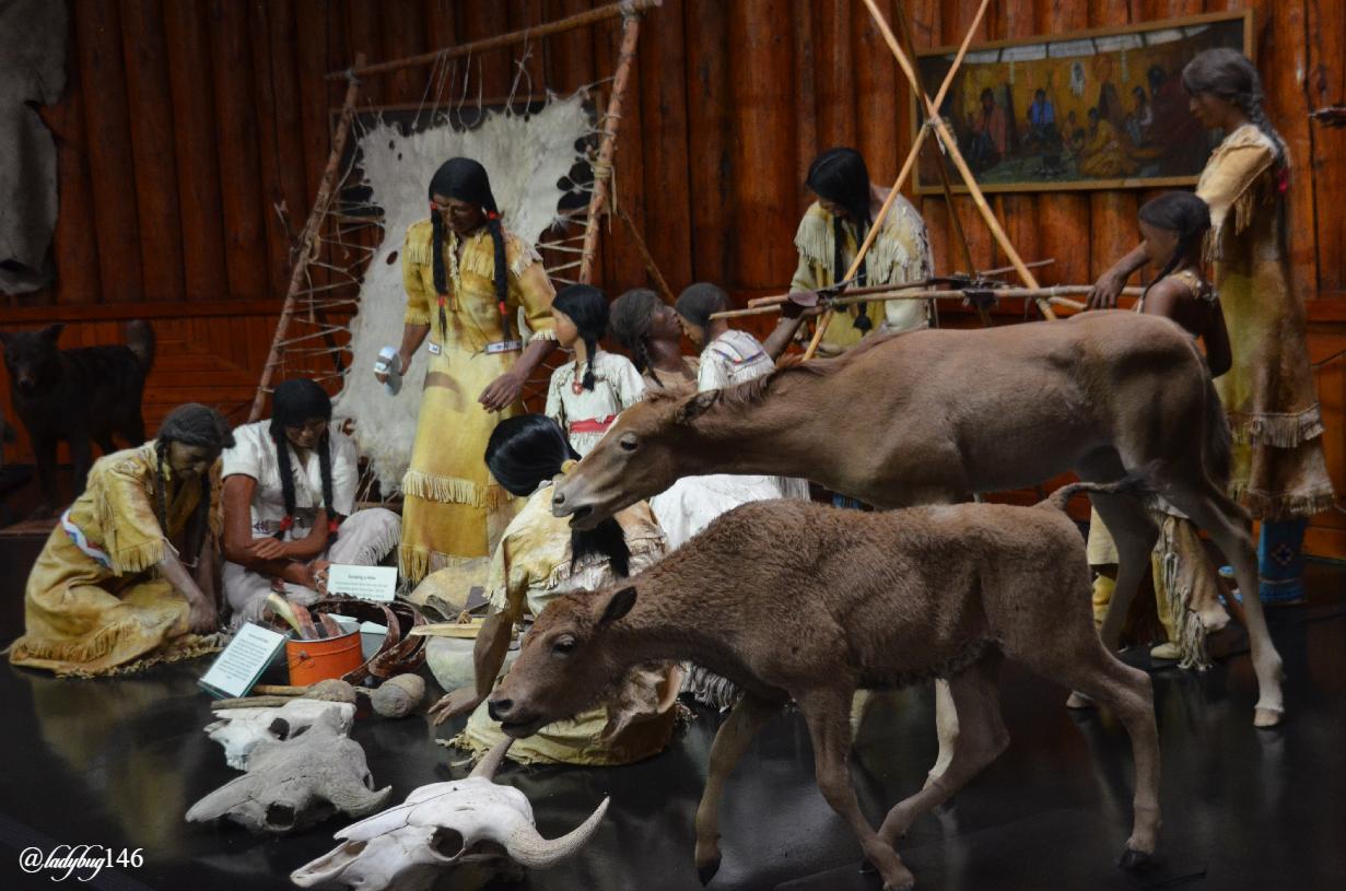 buffalo nations museum (6).jpg