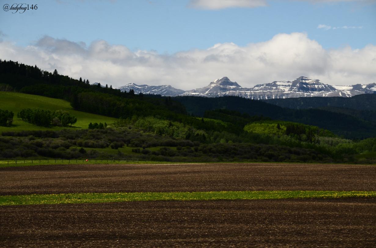 turner valley (2).jpg