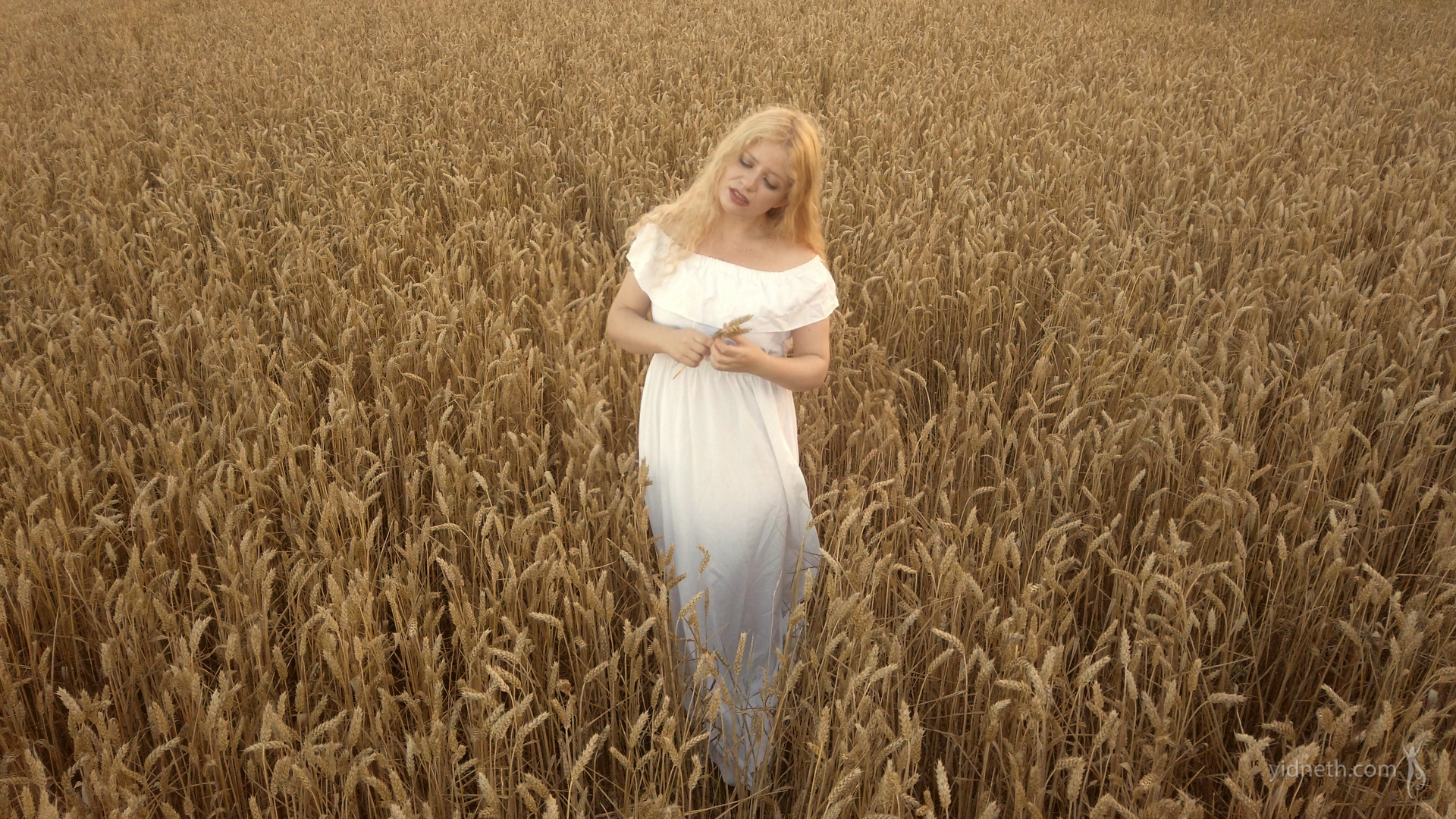 Priscilla Hernandez_fields of gold (2).jpg