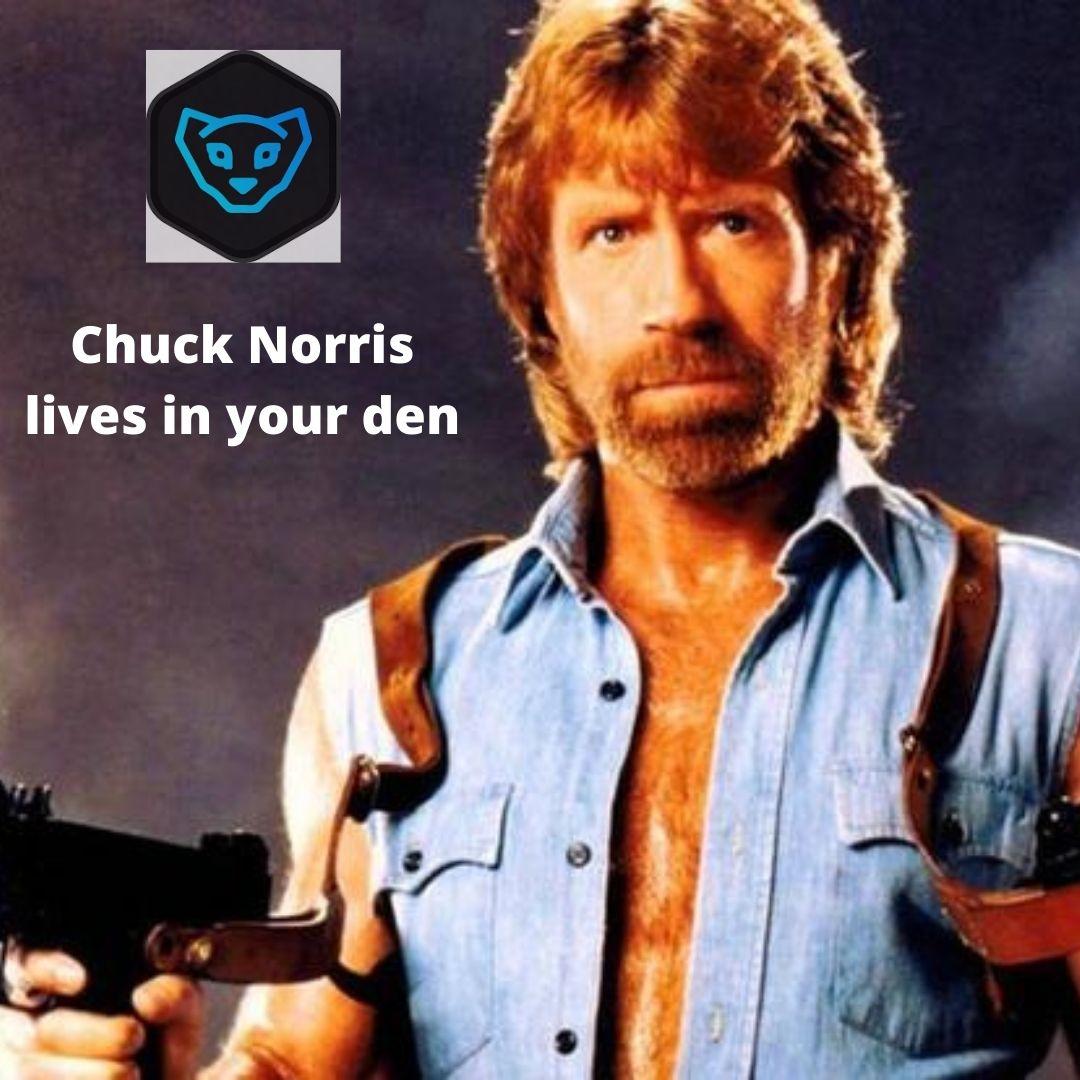 Chuck Norris lives in your den.jpg