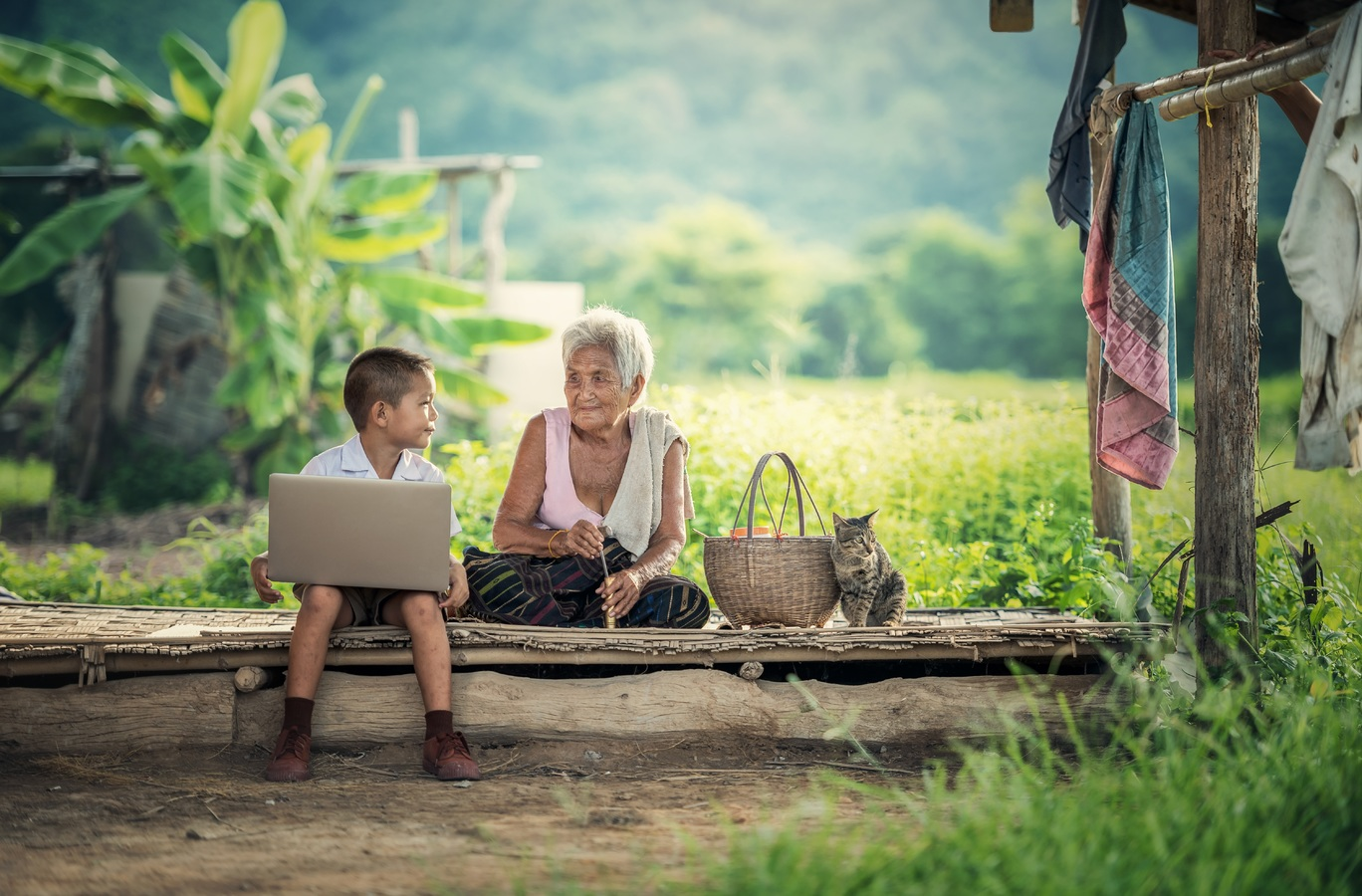 laptop-nature.jpg