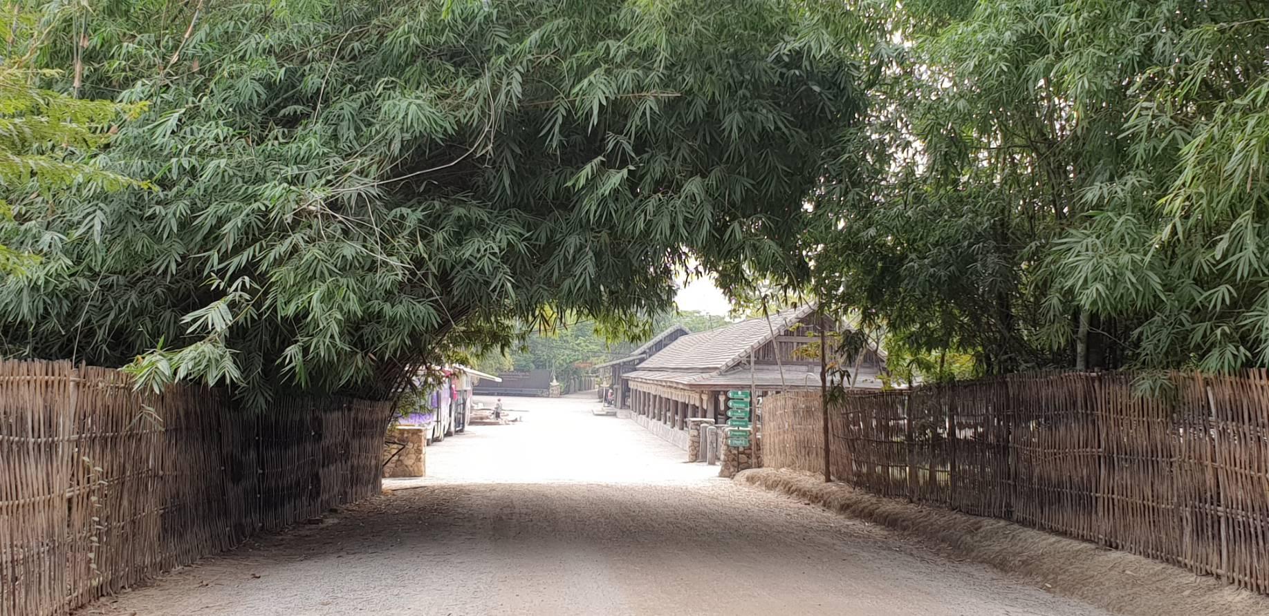 Cherntawan11.jpg