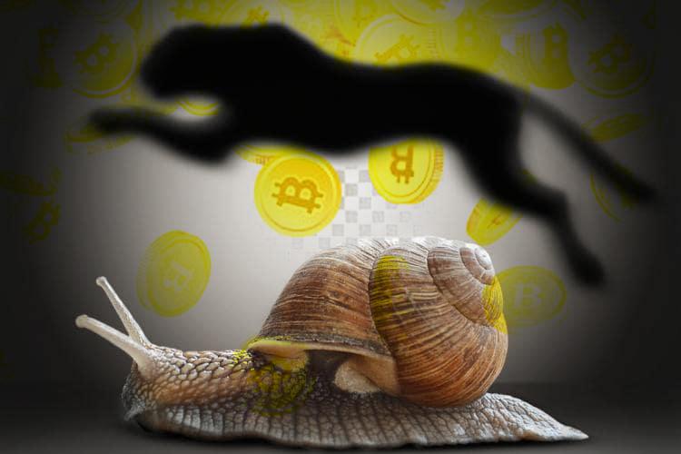slow_fast.jpg