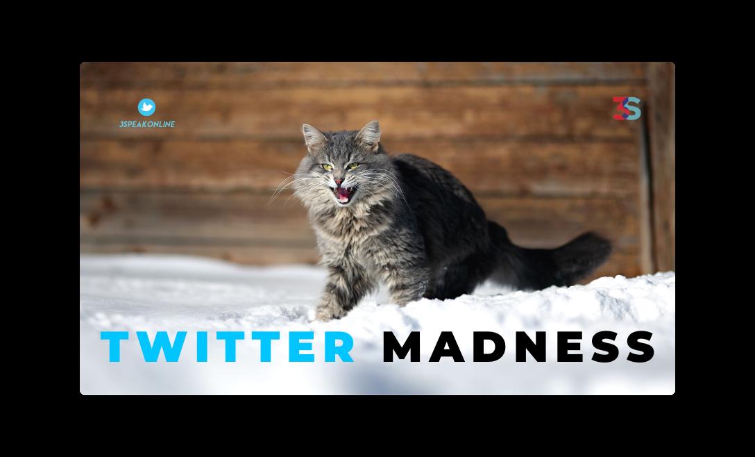 3Speak Twitter Madness.png