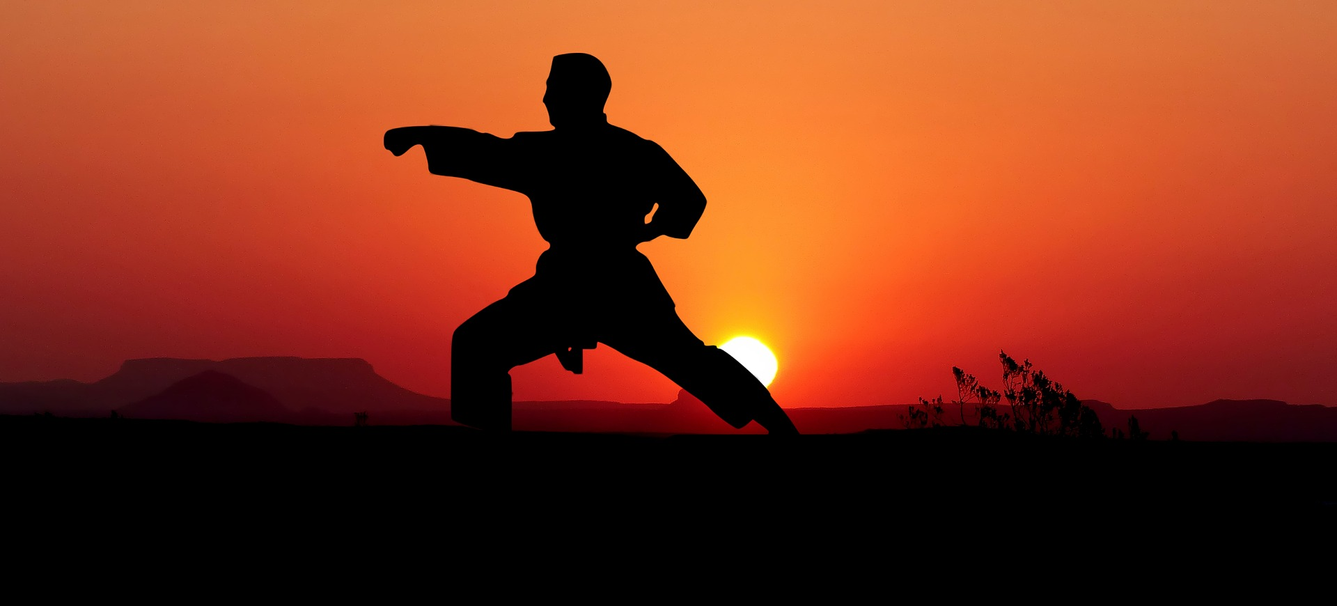 Get It Right, Speed and Power In Martial Art Training.jpg