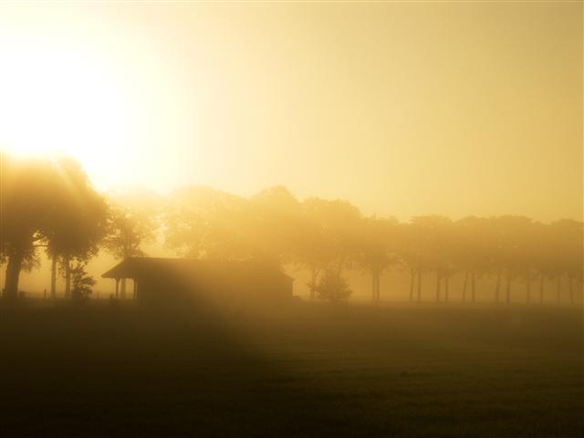 Silhouette sunrise playfulfoodie
