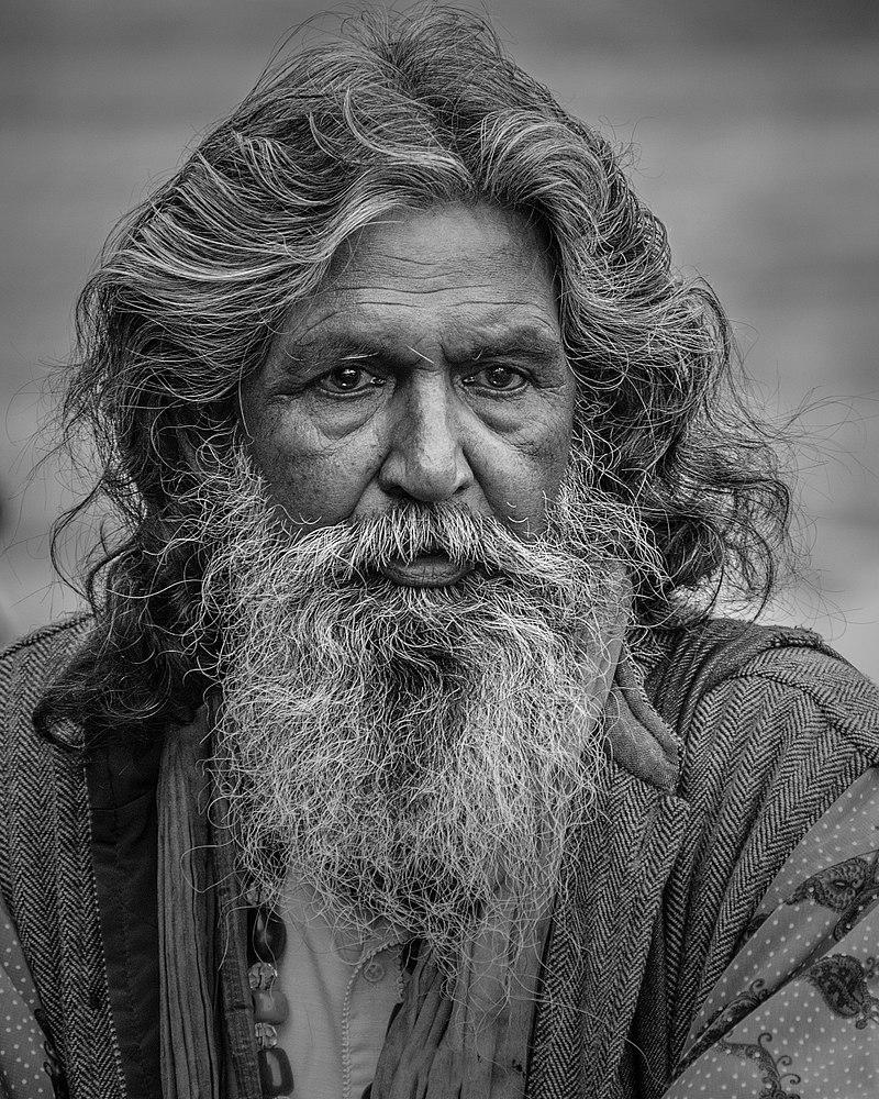 800px-Bearded_man_with_long_hair-3052641 (1).jpg
