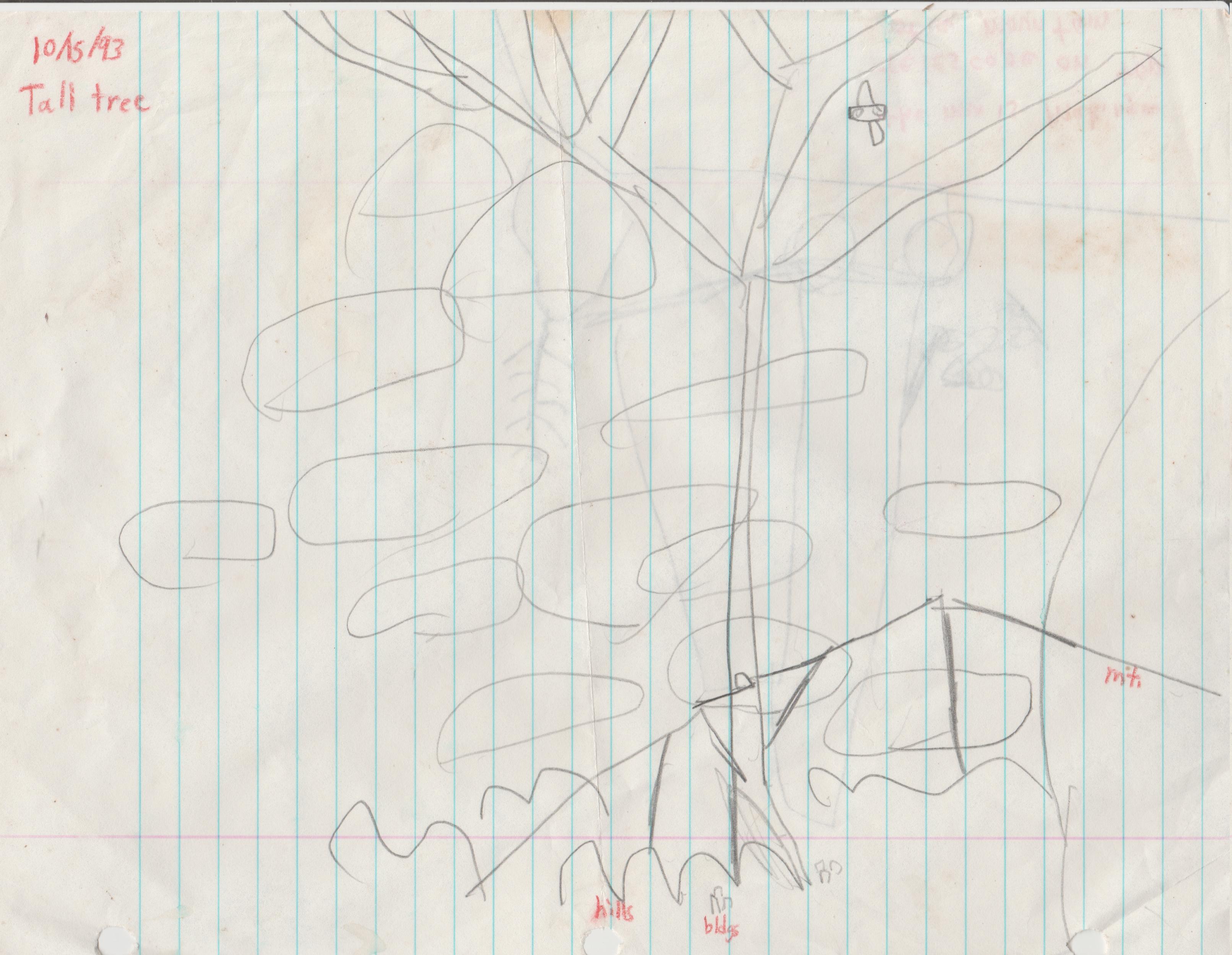 1993-10-15 - Tall Tree, hills, buildings, mountains.jpg