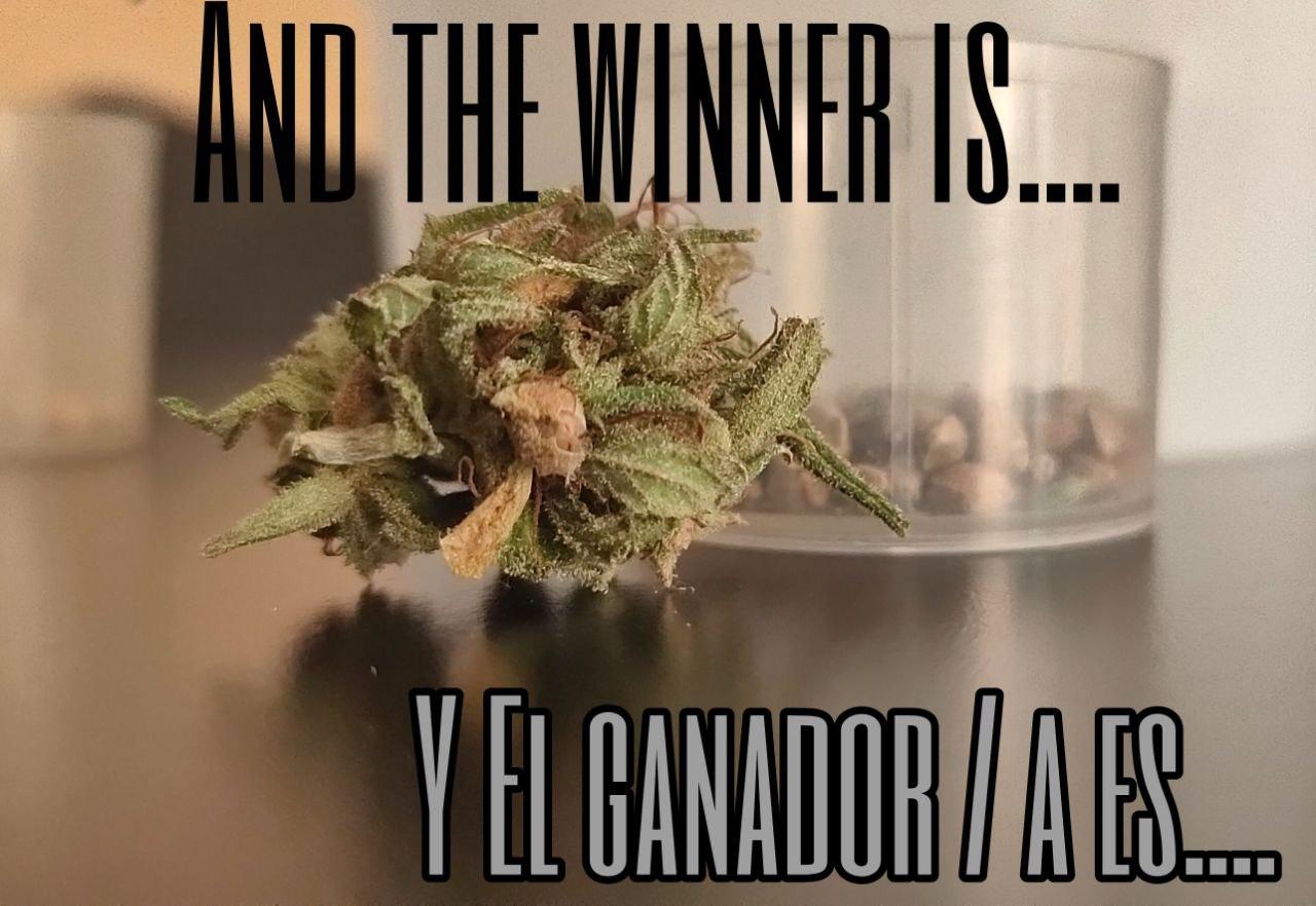 Winner_2.jpeg