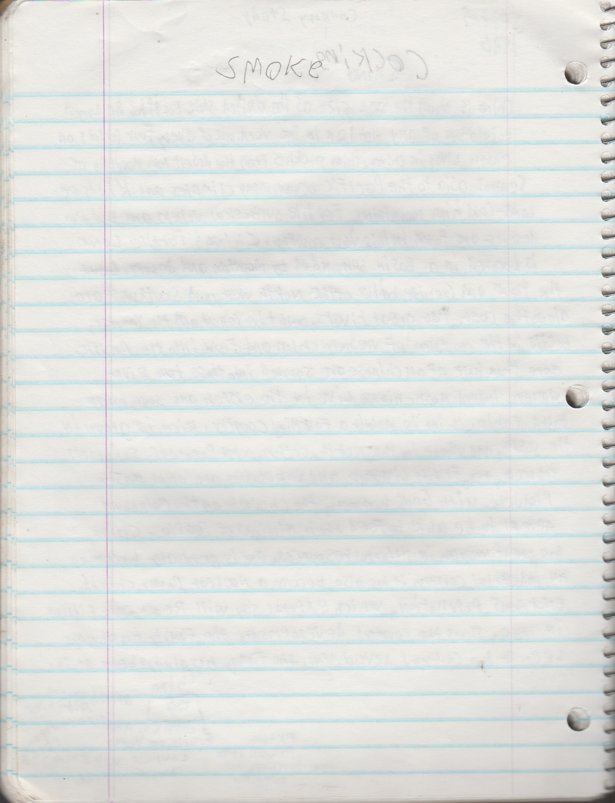 1996-08-18 - Saturday - 11 yr old Joey Arnold's School Book, dates through to 1998 apx, mostly 96, Writings, Drawings, Etc-070.png