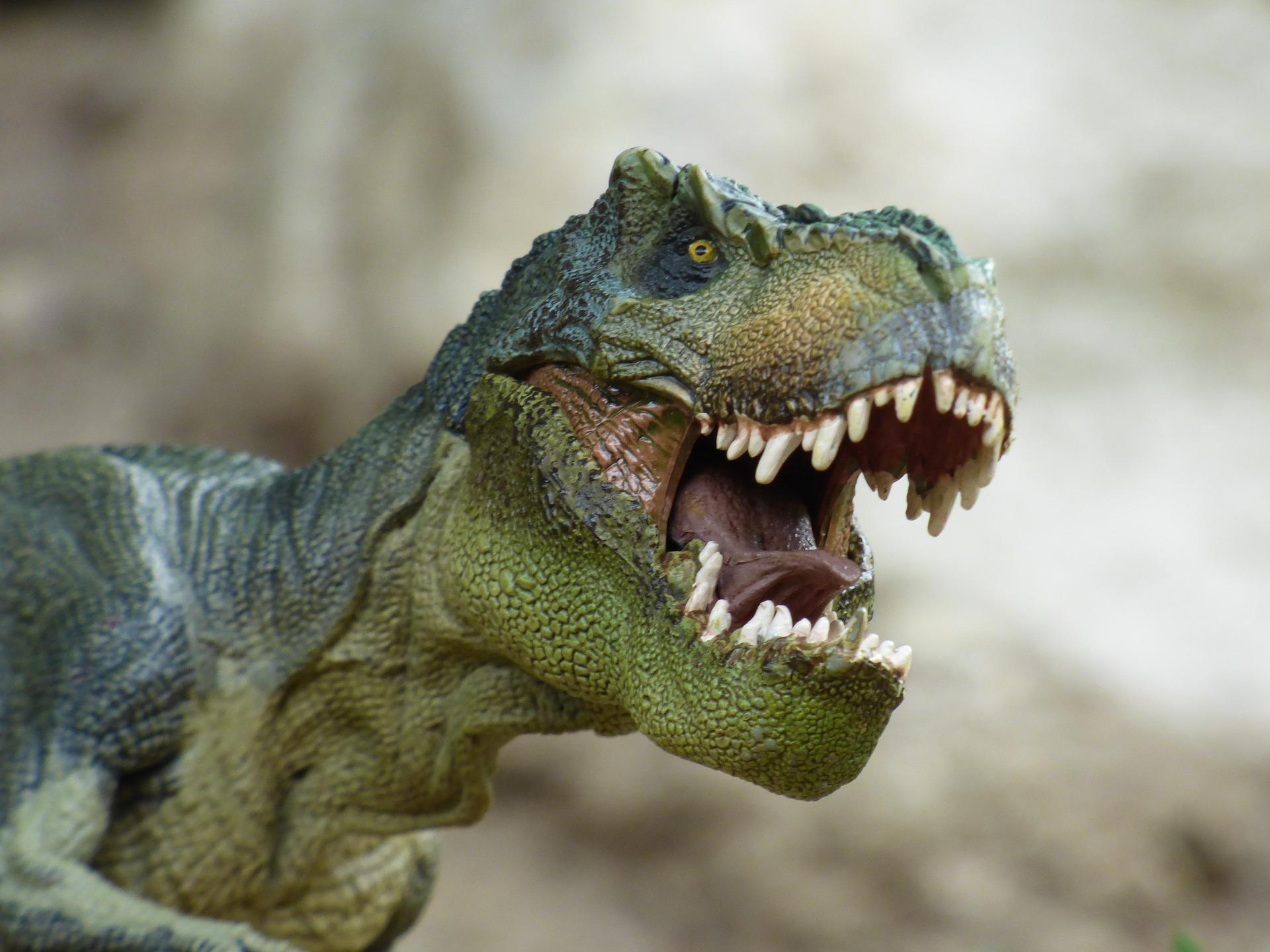 tyrannosaurus855188_1920.jpg