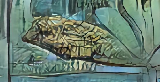 aquarium aux tablatures paperfish.jpg