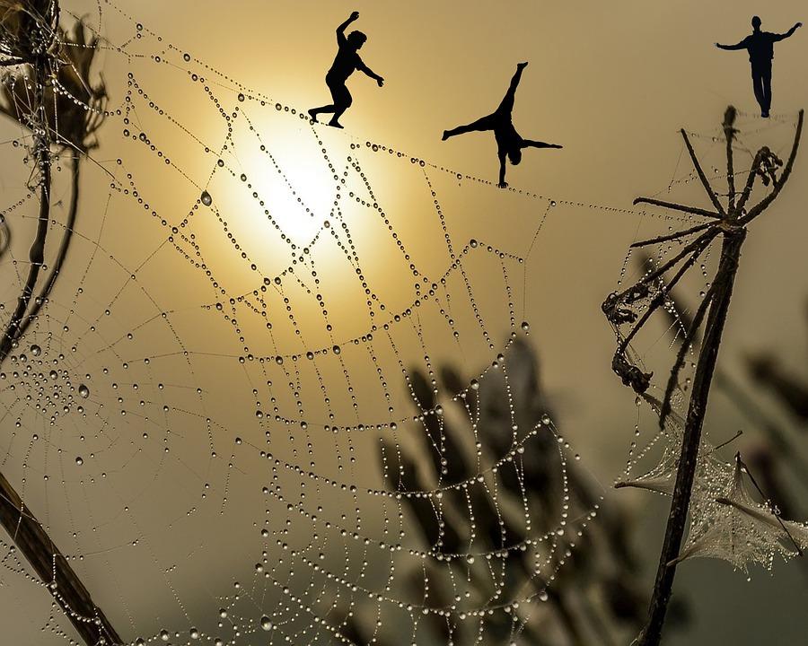 tightrope on spiders web pixa.jpg