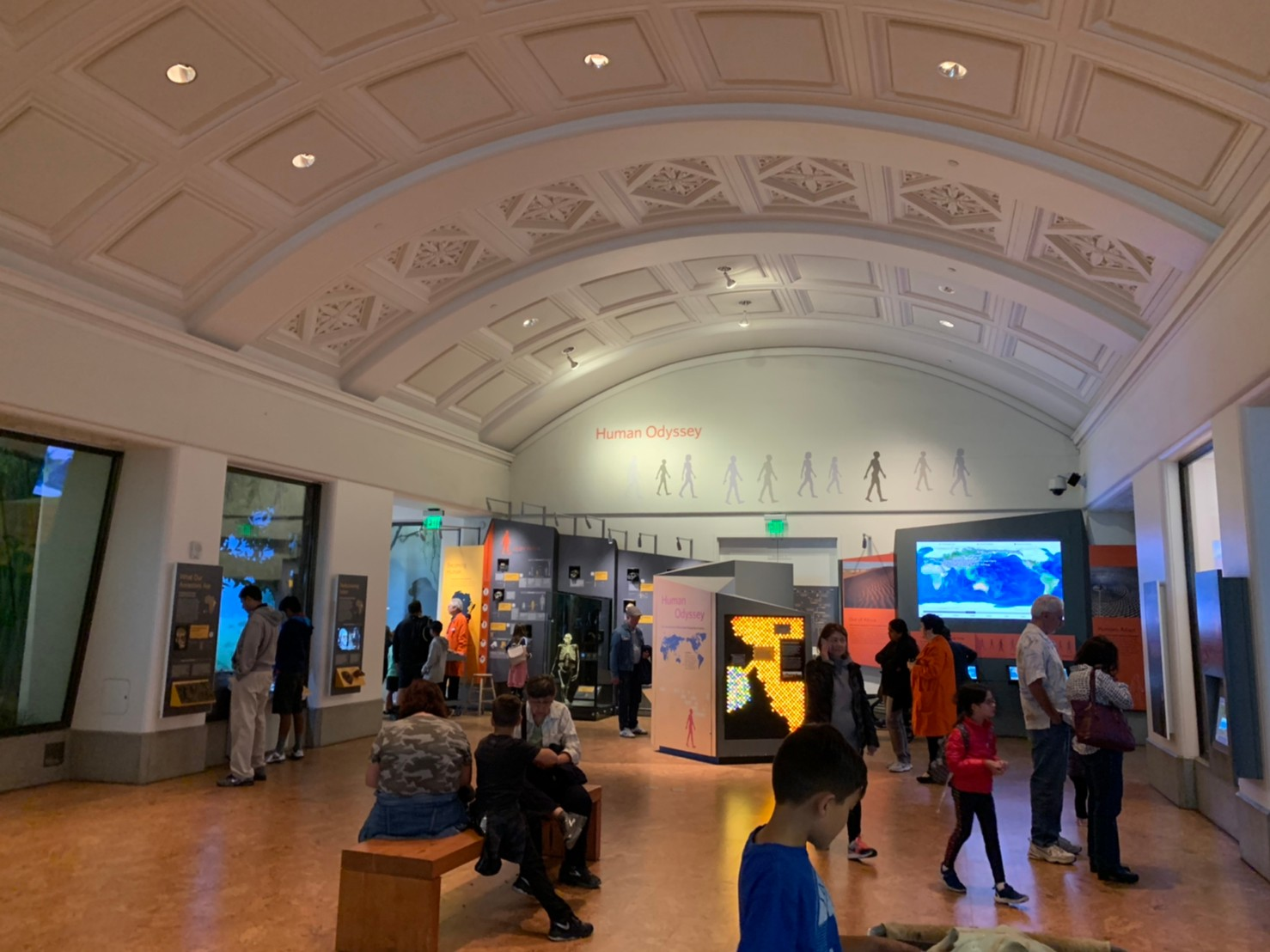 California Academy of Sciences36.jpg
