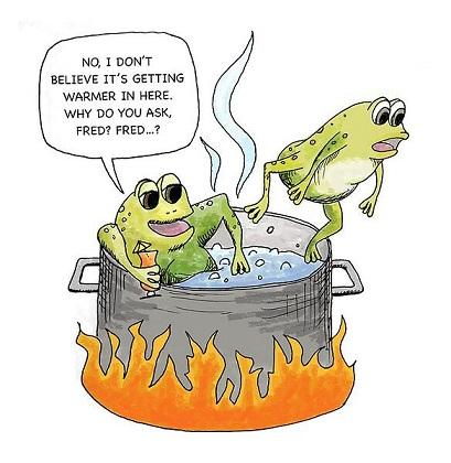 boilingfrogsdrawing.jpg