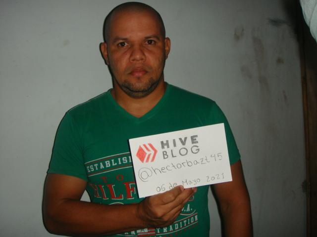 hive 084.JPG