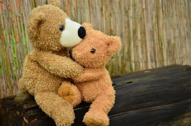 teddy-1113160_640.jpg