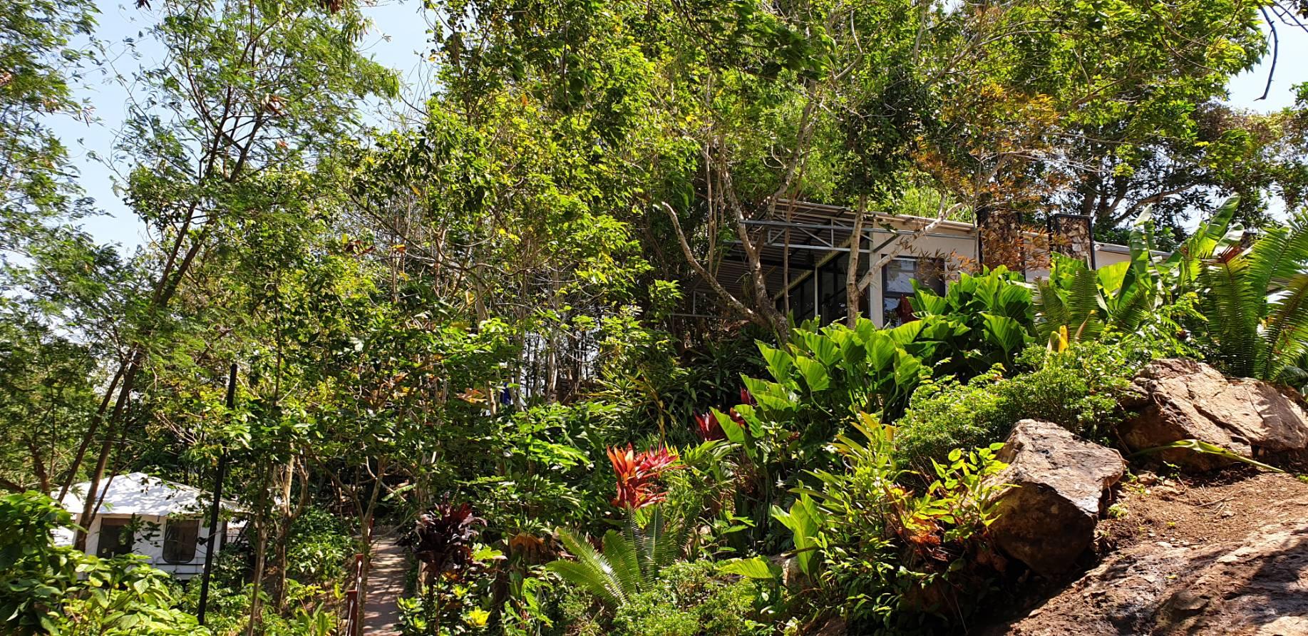 garden view1.jpg
