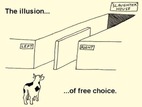 leftrightpoliticschildrentable.png