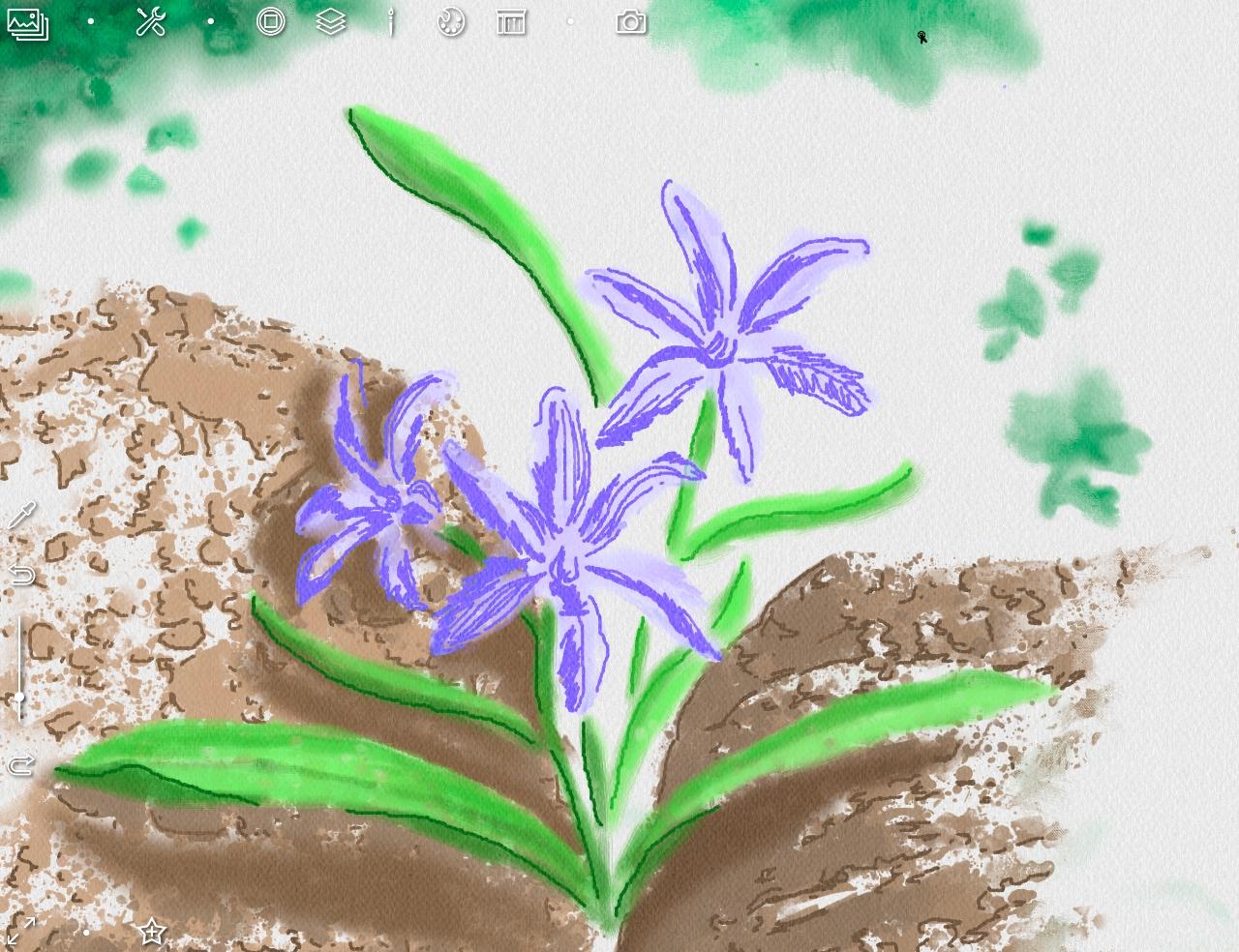 22_Контуры цветов.jpg