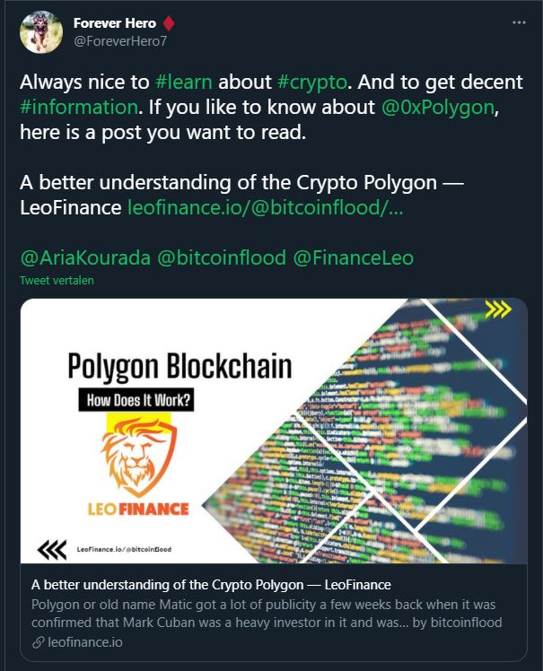bitcoinflood polygon.JPG
