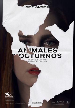 Animales-nocturnos.jpg