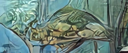 aquarium aux tablatures paperfish3.jpg