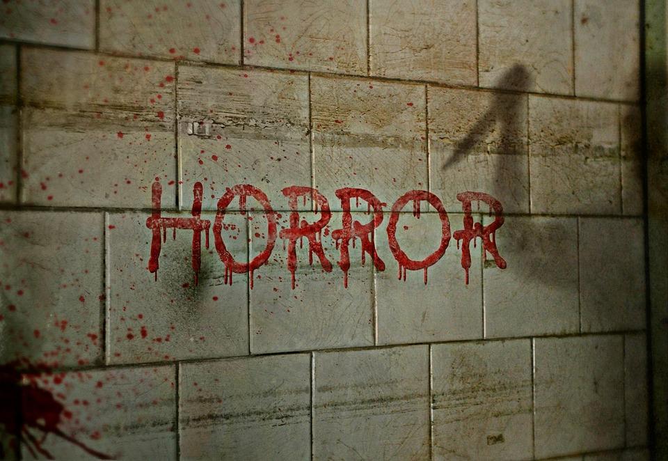 horror-1160360_960_720.jpg