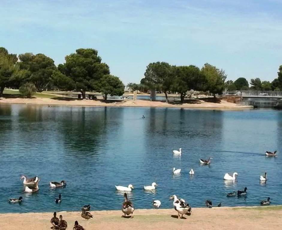 Cisnes port.jpg