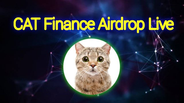 The scam Cat Finance airdrop banner.