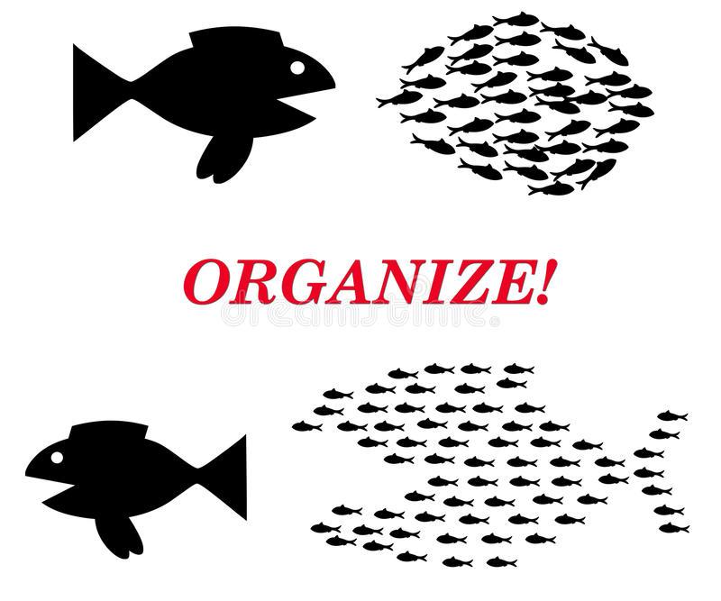 organize-concept-20513599.jpg
