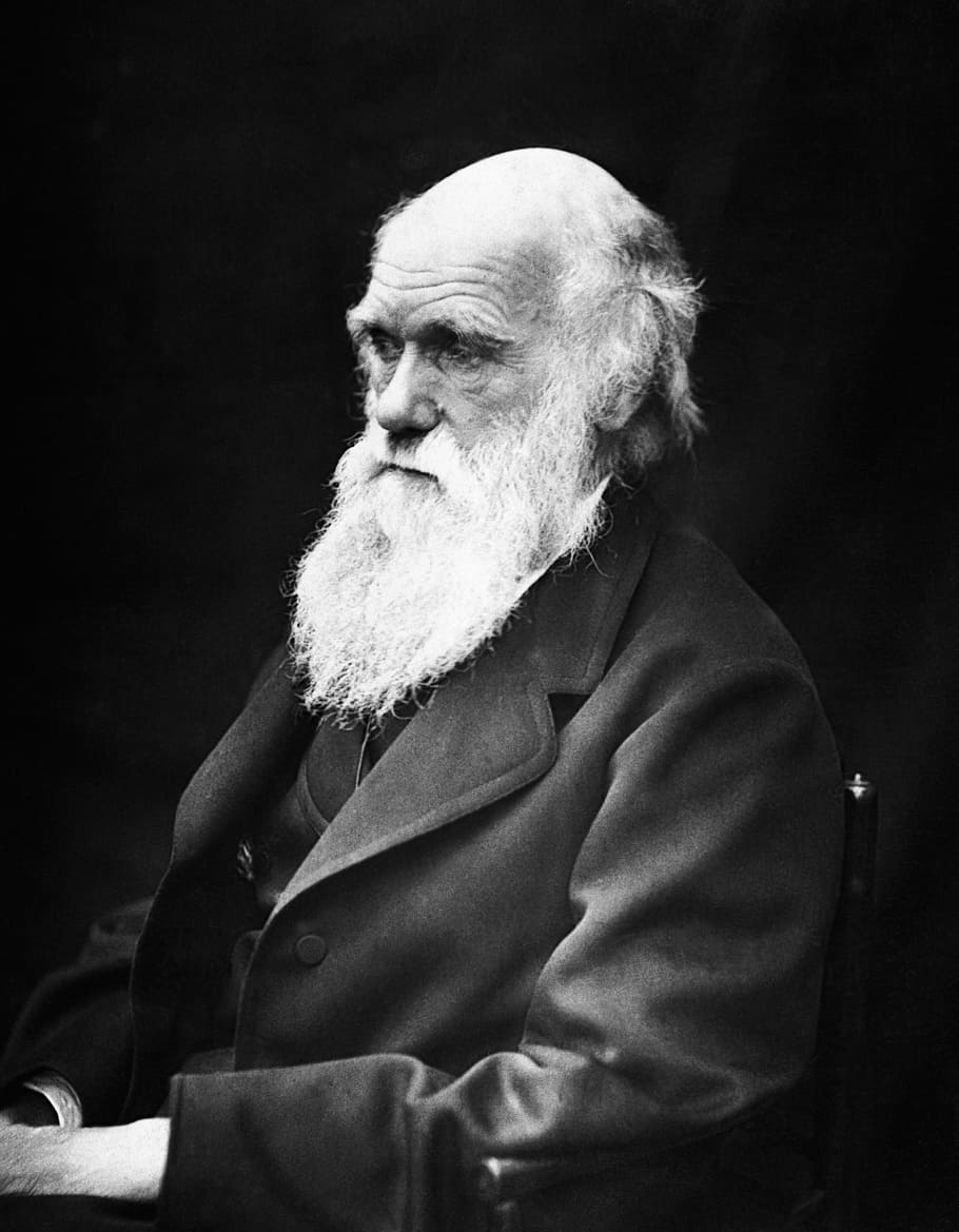 charles-robert-darwin-scientists-naturalist-theory-of-evolution.jpg