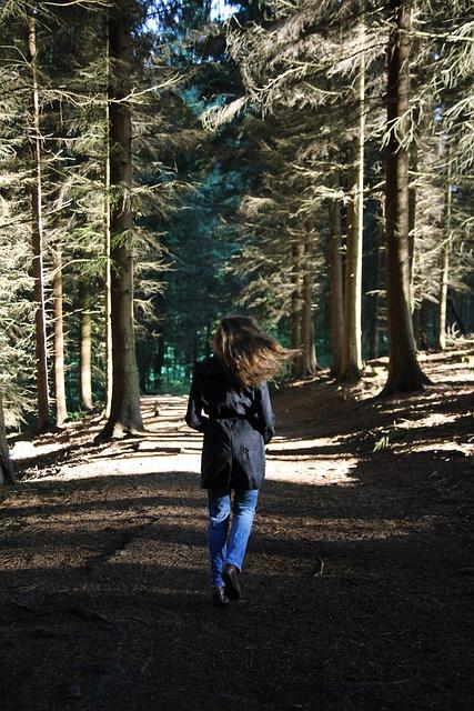 forest-5341672_640.jpg