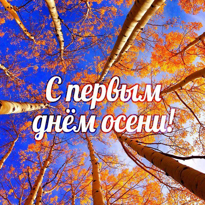 photo_2020-09-01_12-28-14.jpg