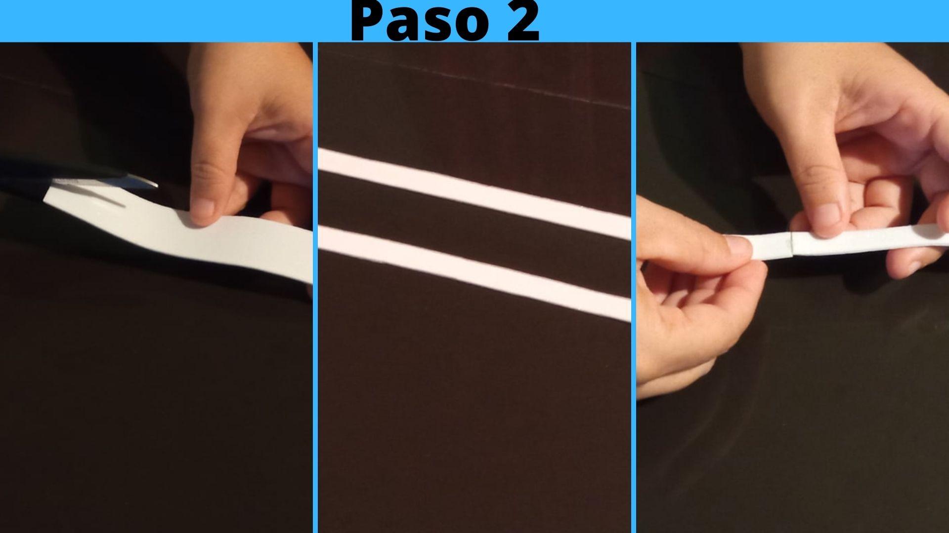 Paso 1.jpg
