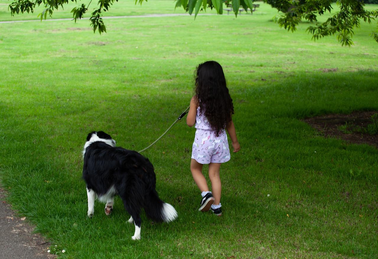 child-with-dog-4297147_1280.jpg