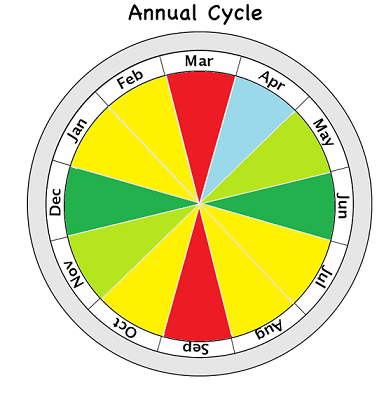 annual_cycletemp.png
