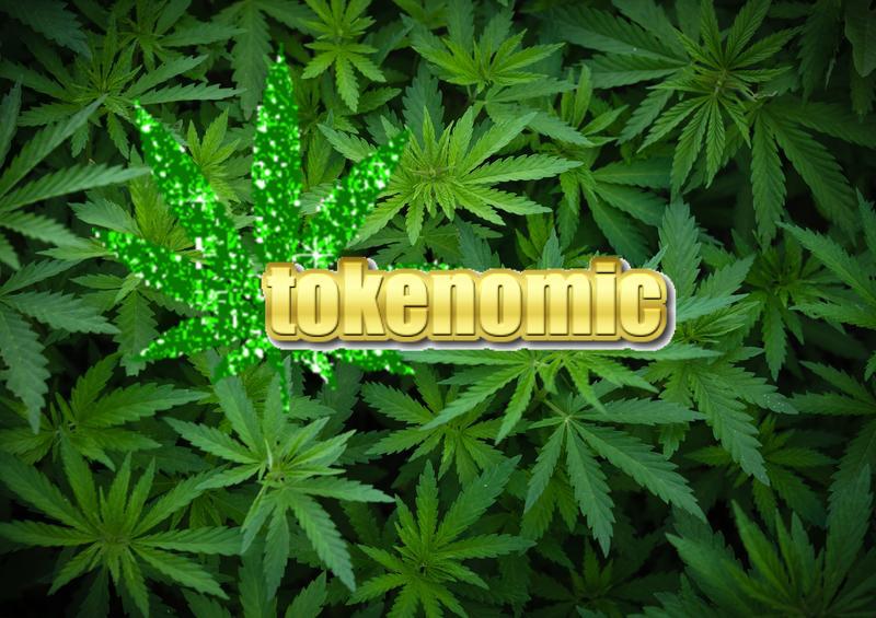 background-young-shoots-marijuana-growing-organic-cannabis-farm-wallpaper-hemp-legal-cultivation-158145829.jpg.png