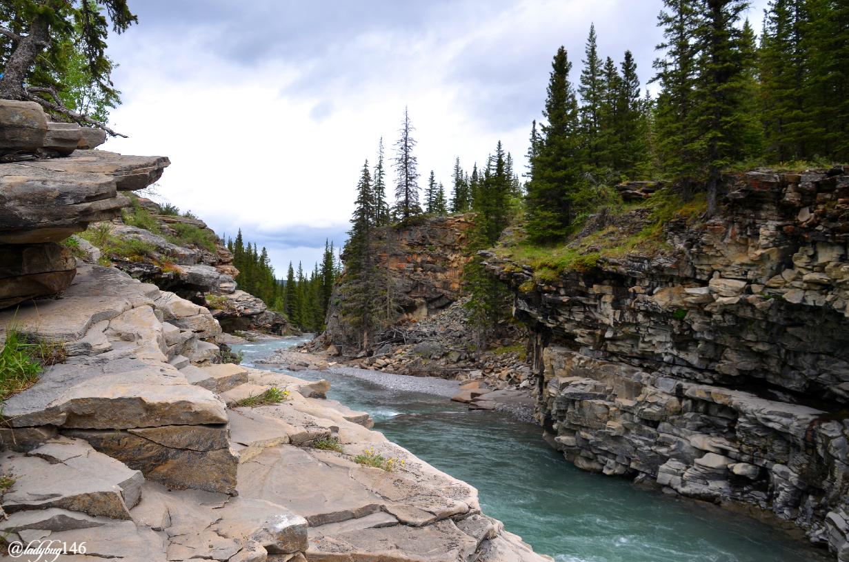 sheep river.jpg