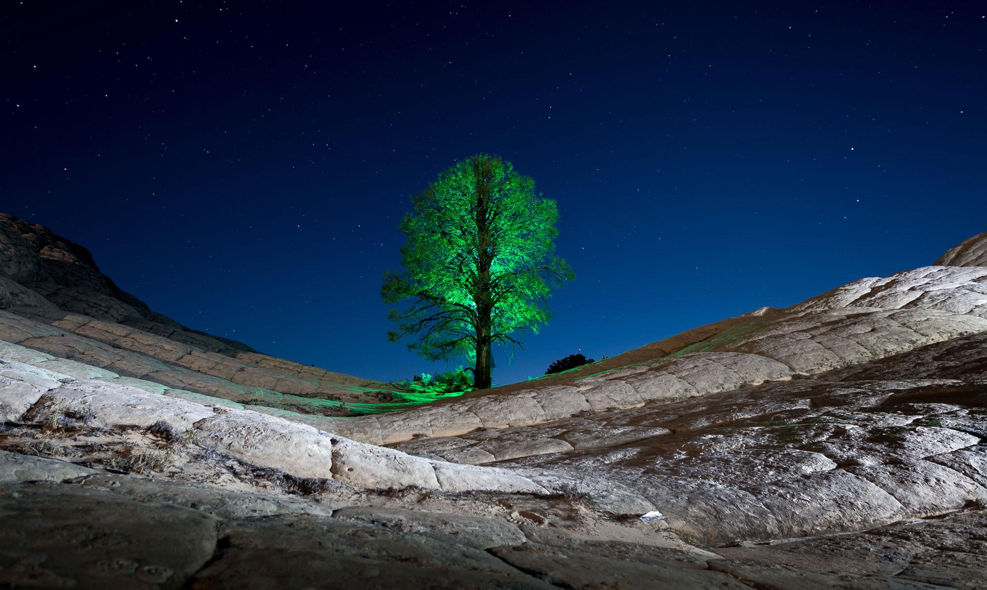 LightPainting-Gunnar-Heilmann_USA-Arizona-White-Pocket-tree-stars-green-extra-arm-visual.jpg
