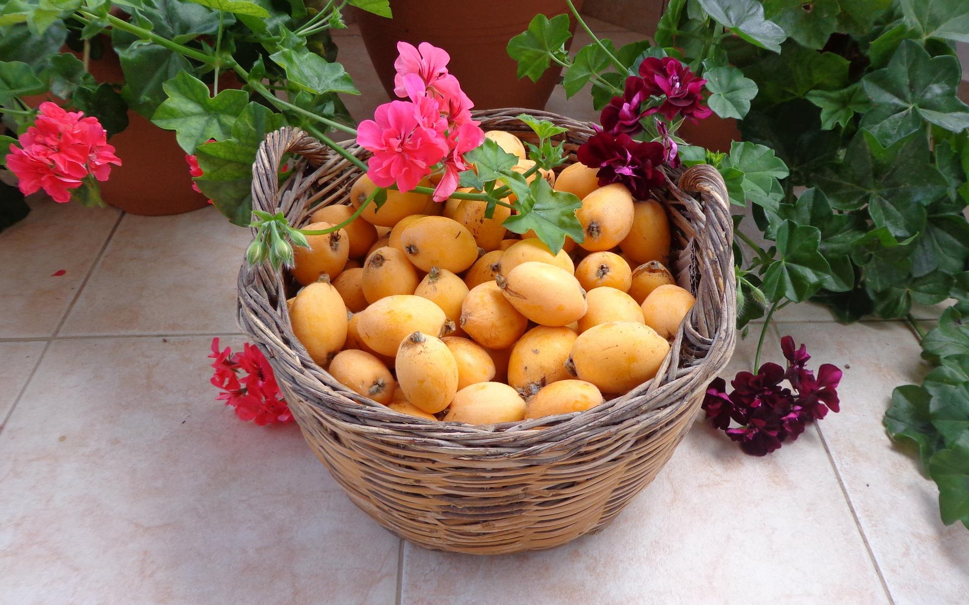 fruits-707149_1920 pixabay.jpg