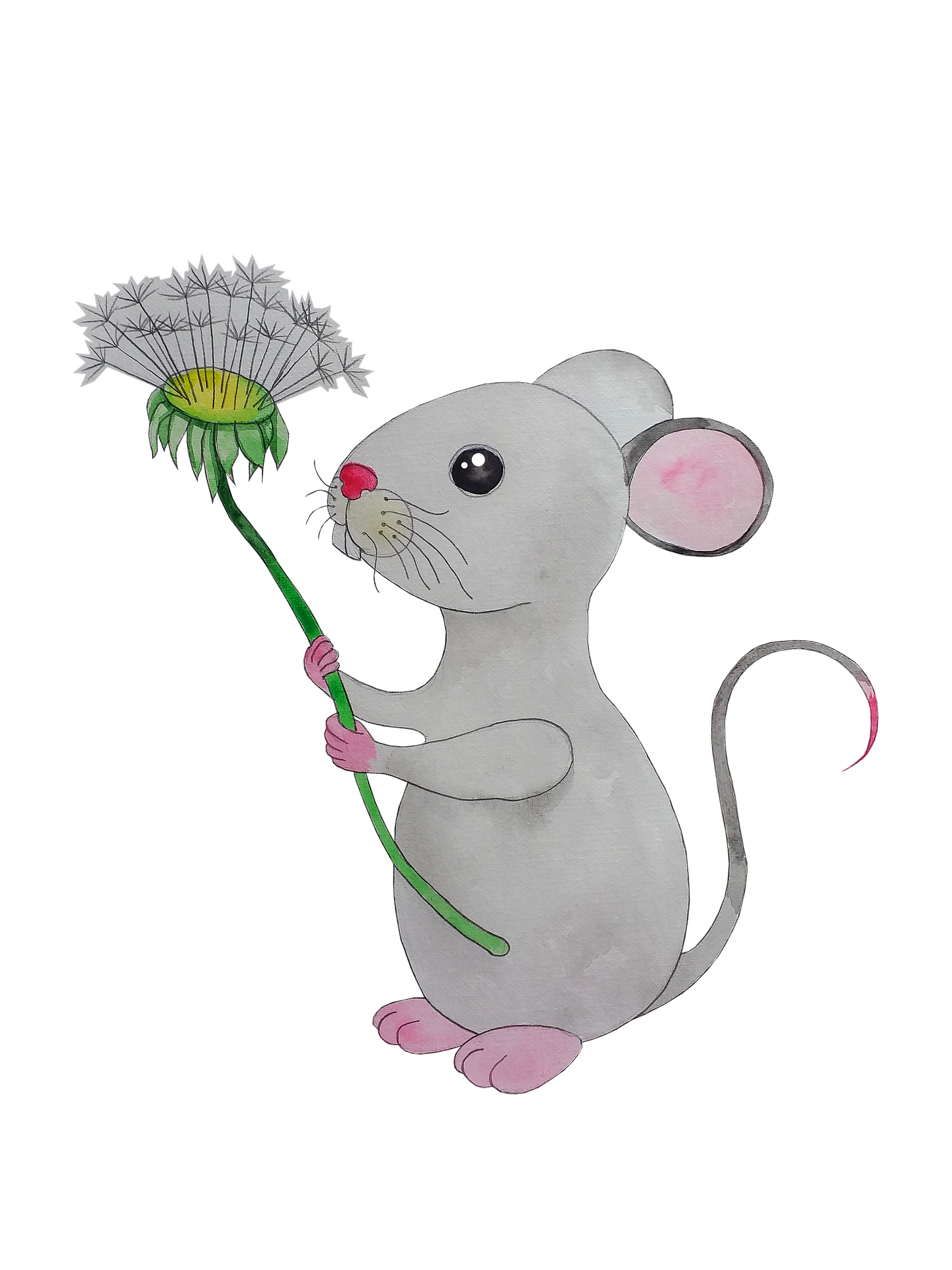 mouse-5718036_1920.png