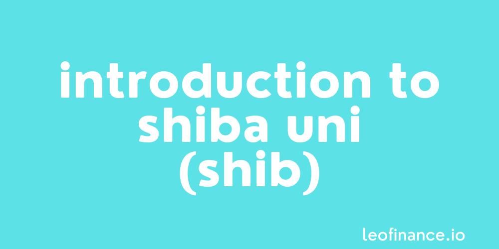 Introduction to Shiba Inu coin (SHIB).